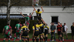 Sparte Rugby