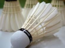 Team München Badminton